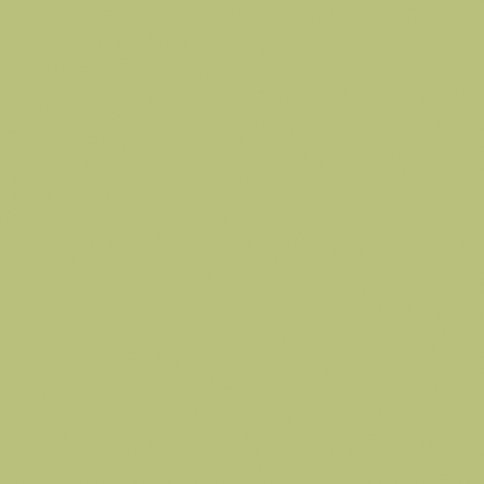 F3007 Pale Olive swatch